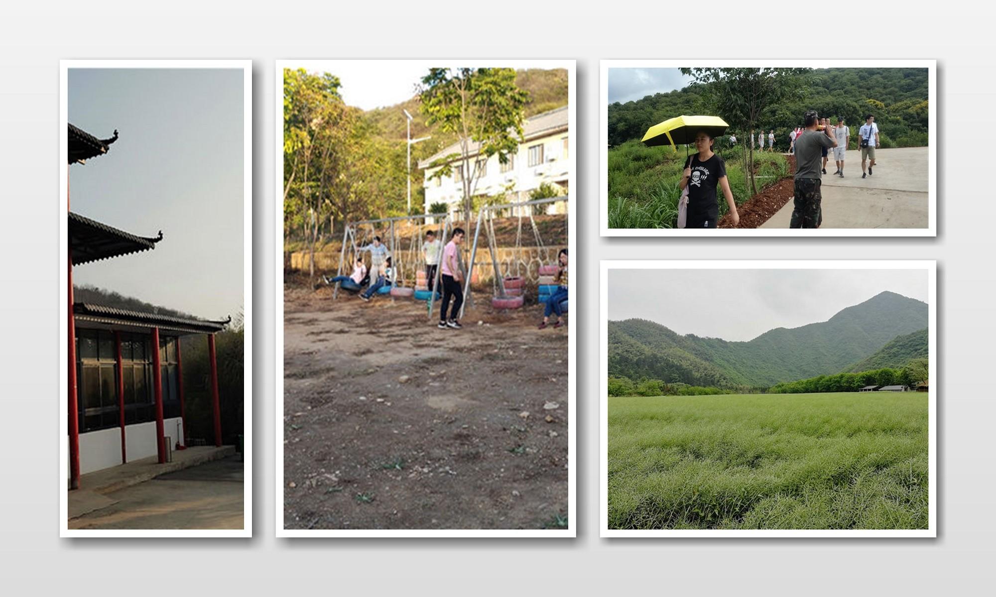 园区景色 (10).jpg